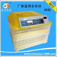 Wholesale egg Incubators Automatic mini incubator hatching machine small household incubator