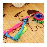 Wholesale 5X Pet Belts Adjustable Length Rainbow colors Pet Leashes Cheap Comfortable training Race dog Belts Festive decoration for dog A2