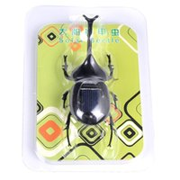 Wholesale New Kids Solar Toys Power Energy Solar beetle Black Children Insect Bug Teaching Fun Gadget Toy Gift