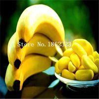 banana passion fruit - 100 Banana seeds Passion Fruit Seeds Passiflora mollisima special