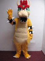 Cheap Mascot Costumes mascot Best Custom Made Dragon turtle cartoon doll clothing