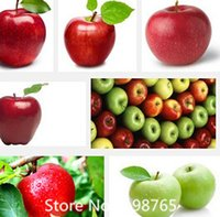Fruit Seeds apples seeds - Promotion Bonsai Apple Tree Seeds rare fruit seeds bonsai tree America red delicious apple seeds garden for flower pot