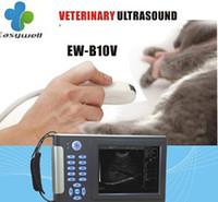 Wholesale Veterinary Full Digital Handheld Ultrasound System B10V with one micro convex probe Veterinary exam types vet general