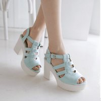 Wholesale New Fashion Thick High Heels Platform Sandal For Women Sexy Casual Buckle Strap High Heels Dress Shoes For Women Hot Sale