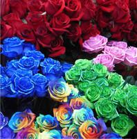 Wholesale Rainbow rose flower seeds COLORS ROSE SEEDS RAINBOW BLUE BLACK GREEN PURPLE DEEP RED Flower Seed Garden Plants
