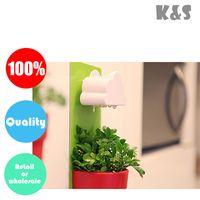 Wholesale Retail or Piece Rainy Pot Wall hung Flowerpot Wall hung Cloud Flowerpot Christmas gift