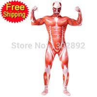 Wholesale Attack on titan cosplay Shingeki no Kyojin cosplay Colossal Prop Tights Muscle Man halloween costumes for men adult zentai