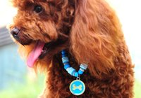 bell suppliers - Dog Cat Fashion Pearl Collar Cute Bone Pendant Pet Necklace Fashion Dog Cat Ornament Pink Blue Color Pet Supplier Size Mix Order
