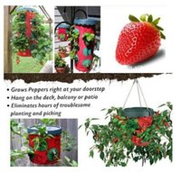 topsy turvy tomato planter - Topsy turvy holes Strawberry tomato pepper planters Home grown essential goods Vegetable planting bags hanging