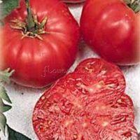beefsteak tomato seeds - 100 Watermelon Beefsteak Tomato Seeds delicious TT211