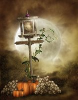 Wholesale 150x220cm x7ft halloween photography backdrops Full Moon Pumpkin Skull photography studio ZJ