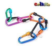 aluminium snap hooks - Pack Aluminium Carabiner D Ring Key Chain Clip Snap Hook for Outdoor Hiking Camping S0020