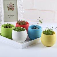 basil plants flowering - 1PCS Cute Creative Candy Bosai Plastic Indoor Plant Pot Colors Violet Love Grass Basil Clover Green Diamond seed Home Decor