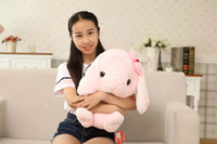 adorable rabbits - cm Soft adorable rabbit Japanese Amuse Lop plush toy doll rabbit doll birthday gift Best Gift
