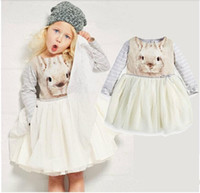 Wholesale girl Adorable princess dress with an bunny photo print long sleeved top full tutu dress for Autumn winter dresses