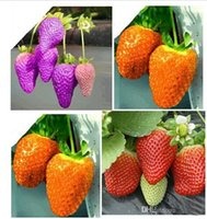 Wholesale 30 OFF Cheap Fruit Seeds On Sales kinds of strawberry seeds white yellow blue black red green great strawberries
