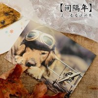 Sample Retail amazing photography - piece gap year Wang star s amazing journey into dog photography postcard greeting card