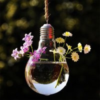 Wholesale New Clear Light Bulb Shape Glass Hanging Hydroponic Flower Vase Home Decor Creative