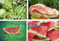 baby watermelon seeds - 20 delicious Watermelon Sugar Baby Garden fruit seeds
