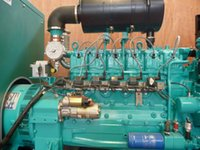 Wholesale Hydrogen gas fuelled electricity genset