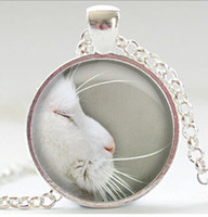 South American beard pictures - Long beard silver cat glass necklace charm Art picture round pendant necklaces Spring Choker jewelry gift CN401