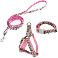 Wholesale US STOCK pieces in set Pet Collar Set Blue Pink Leopard Nylon Leash Collar Harness For Dogs Cats Size S M Pet Products