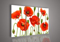 acrylic canvas art - 3 Piece Wall Art No Frameless draw Modern Abstract Acrylic Flower Red Poppy Oil Painting On Canvas Large Cheap Pictures Decor