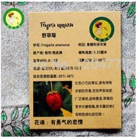 Wholesale Seeds of wild strawberry woodland strawberry juicy and delicious fruit for jams seeds bag