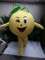 al por mayor vestido de la fruta de naranja-Alta calidad de Orange profesional de la mascota del traje del comercio exterior del vestido de lujo de la fruta