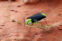 Wholesale Hot Selling Mini Grasshopper Toy Fun Solar Power Robot Insect Locust Educational Toy New and