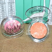 baking schools - Too cool for school dinosaur square baking baking cheek rouge Mineral Bronzing nude make up makeup