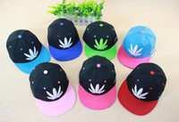 Wholesale Fashion Preppy Style Hat Blunt Pattern Hiphop Caps For Boy And Girl Feather Embroidered Snapback Cap