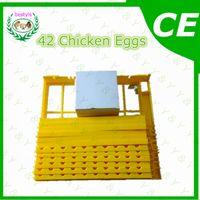 Wholesale Plastic incubator quail Egg tray small egg tray machine A