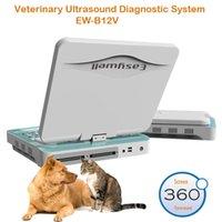 Wholesale Color Doppler Ultrasound Imaging System EW B12V ultrasound scanner