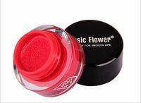 Wholesale Lady Makeup Maquiagem D Music Flower Air Cushion h Long Lasting Lip Gloss Waterproof Colors with Lip Brush