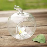 wooden planter - TOP Cute Clear Glass Vase Planter Hydroponic Pot Home Wedding Decor Apple Shape