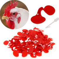 Wholesale Novelty Red Plastic Chicken Eye Glasses Livestock Eye Protector Hen Pecking Avoidable Poultry