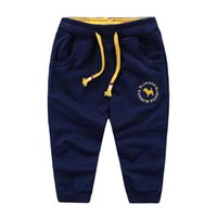 baby blue sweatpants - 2016 Spring Fashions boys sweatpants Kids embroidered tracksuit trousers baby cotton leisure pants childrens sports pants
