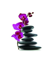 Wholesale Charming Black Stone Red Flower Vivd D Great Bathroom Waterproof Shower Curtain for Sale