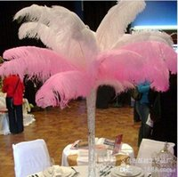 Wholesale 2015 Hot Sale The High Quality Ostrich Feathers ostrich plumes A Quality for wedding centerpiece