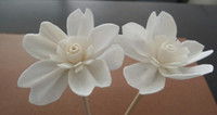 Wholesale Hot Sale New Design and High Quality Sola Wooden Flower for Fragrance Diffuser With Size of Diameter2 cm for Decorations