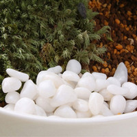 Wholesale 1 Bag Natural Stone White Ornaments For Flower Pots Decoration Small Paving Micro world Garden Supplies