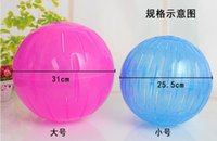 Wholesale 2015 New My neighbor totoro movement the Guinea pigs run the ball ball toy products cm