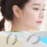allergy to silver - Korean female star earringspalmbeach zircon pure silver earrings with micro anti allergy earrings to South Korea