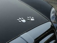 Cheap Auto decals with Dog paw Bumper Stickers soft pvc silver Cool cheap car decals Best Silver Gold Red Auto Decals with Dog Paw