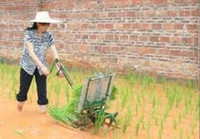 Wholesale Manual portable rice transplanter hand cranked rice paddy transplanter manual planter seeder