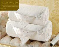 Wholesale Home Textile New Arrive KG Jacquard Quilt Jacquard Comforter Healthcare Silk Full Handmade Blanket Bedding Set MTQZ