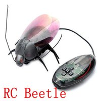 beetle insects - New RC Mini Remote Control Fun Beetle Cockroach Insect Toy Robot Infrared Fluorescent pc