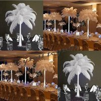 Wholesale 100pcs cm inch high quality precious White ostrich feathers Wedding Variety of decorative