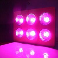 Wholesale COB Led grow light w led spot light bulb lamp for flowering plant Home growth